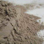 black cohosh powder copyright d hugonin